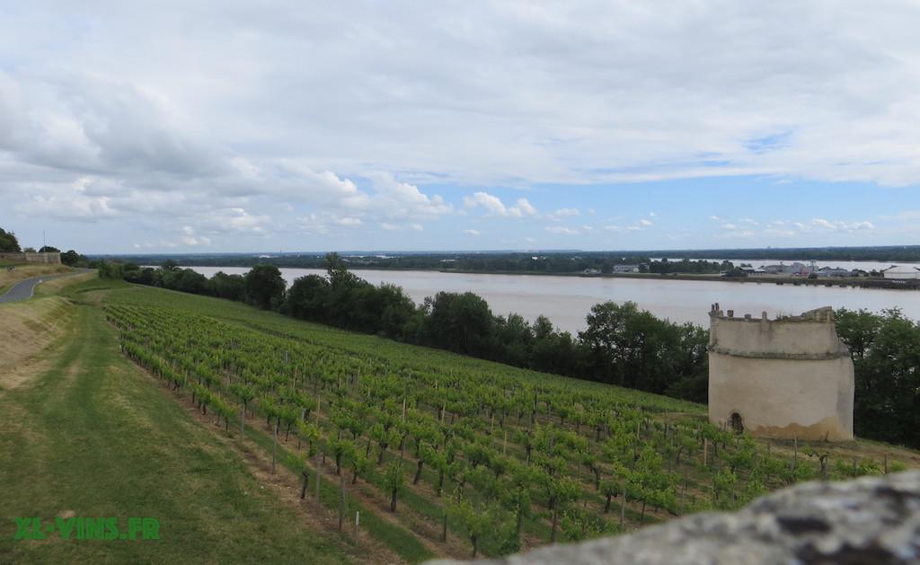 Portes ouvertes Côtes de Bourg 2017, Bordeaux