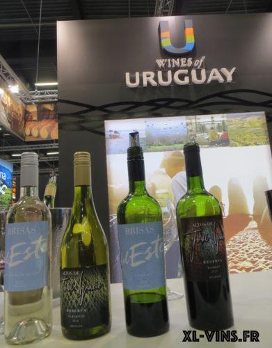 Vins d'Uruguay