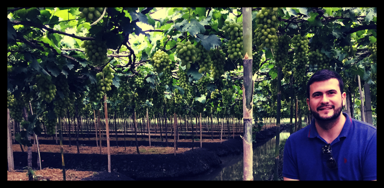 Xavier LACOMBE xlvins burgundy wine blog