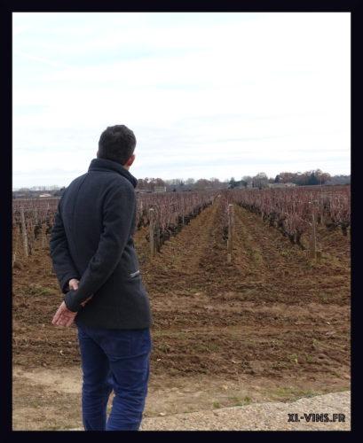 Fabrice DUBOURDIEU. Château Doisy-Daëne, appellation Barsac (Sauternes)