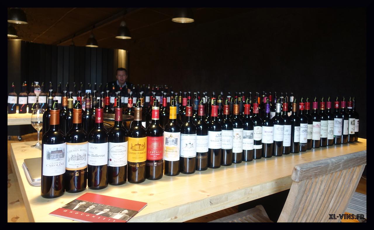 Dégustation des vins d'Oenoconseil au Château Lestage