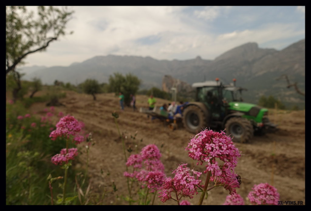 Tractor at Guadalest