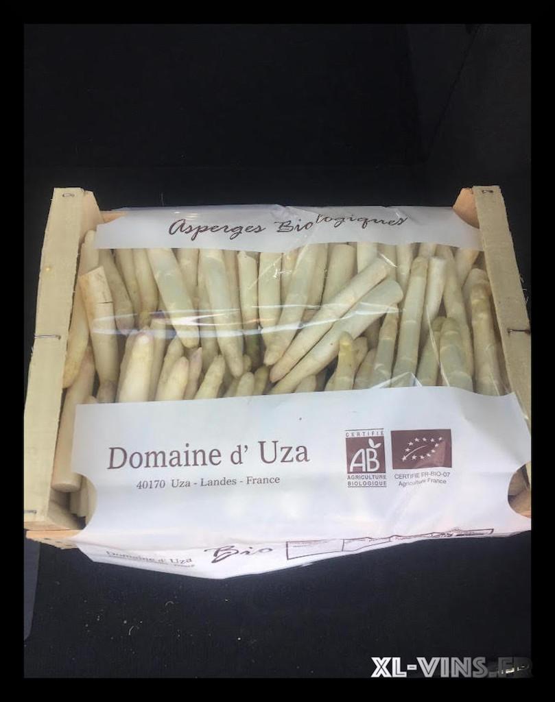 Les asperges bio du Domaine d'Uza  !