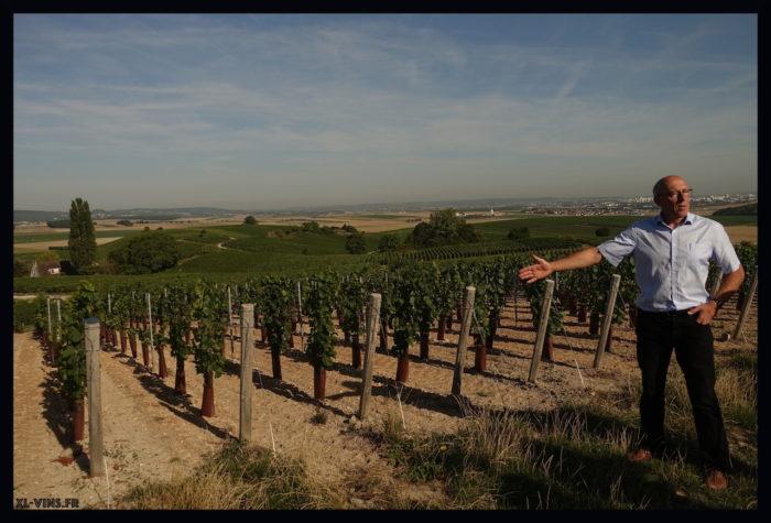 Charles Heidsieck-new vines
